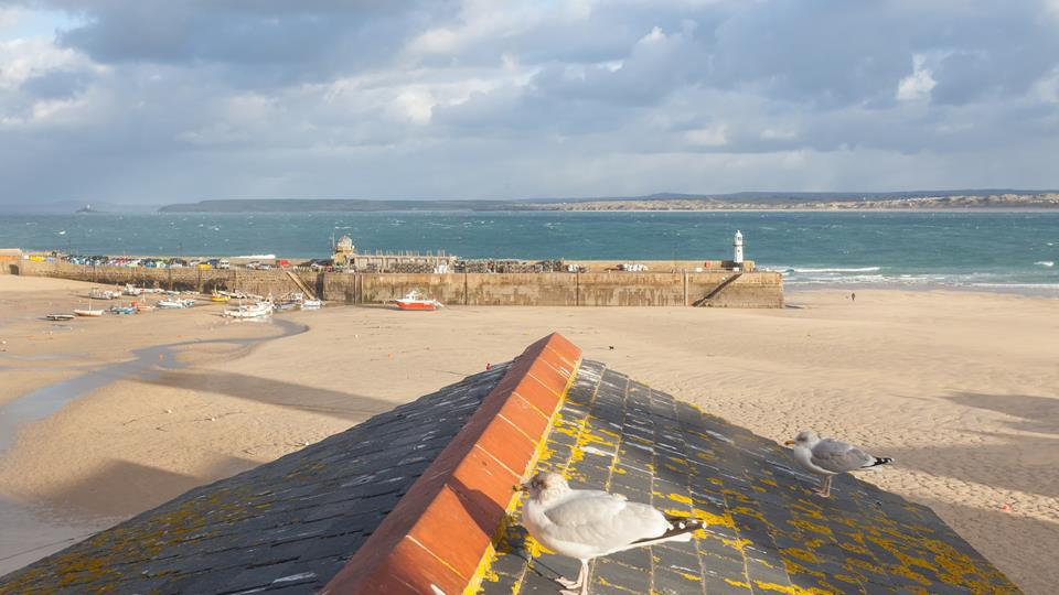 The views are beautiful over St Ives Harbour and beach.