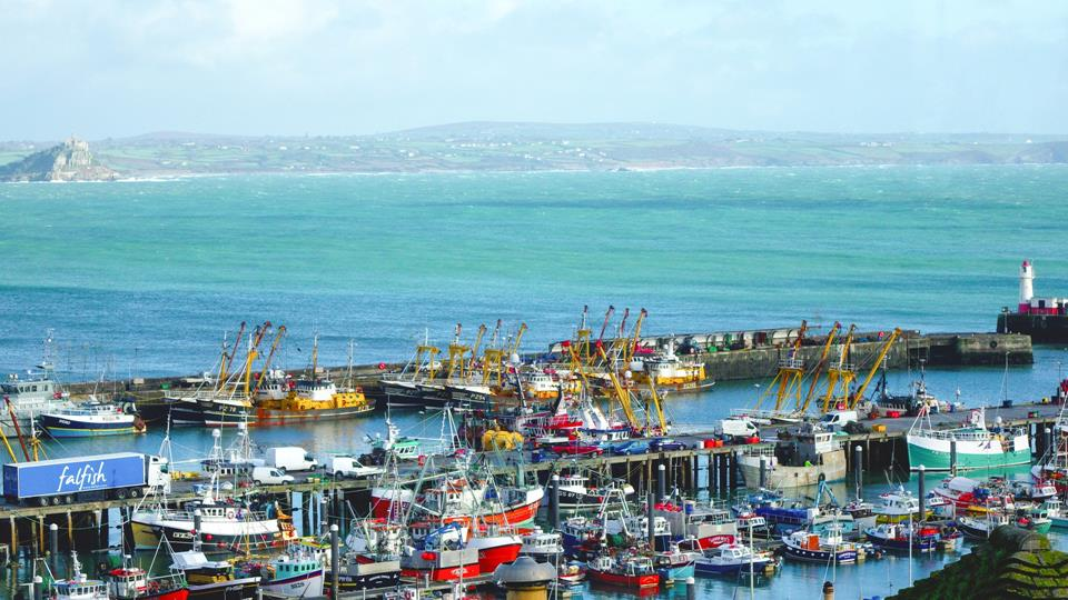 Newlyn Harbour is famous for the quality of fish which you can find in many local fishmongers.