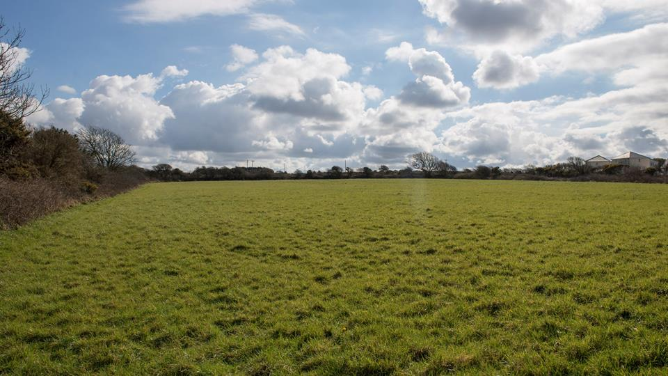 The communal fields nearby are perfect for both the children and the pooch to let off some steam.