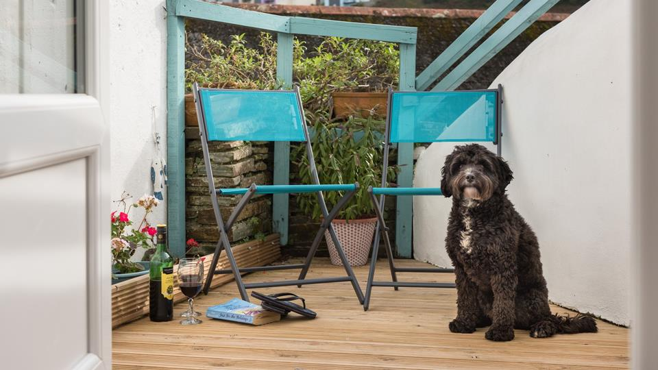 Dogs are very much welcomed at Pendenza, so bring your beloved four-legged friend along to enjoy the holiday too.