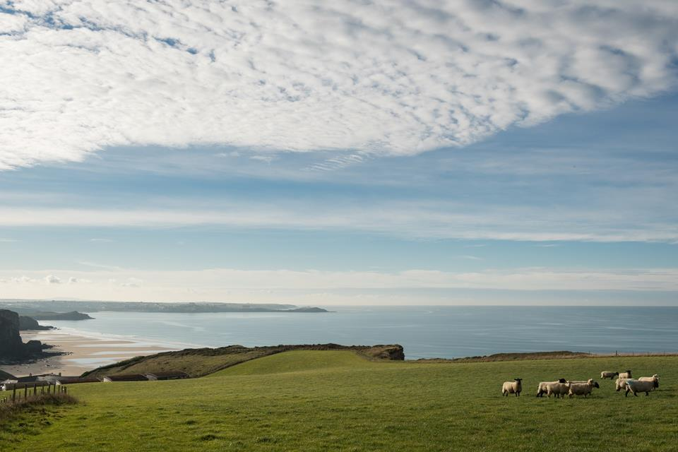Enjoy spectacular views from the south west coast path.