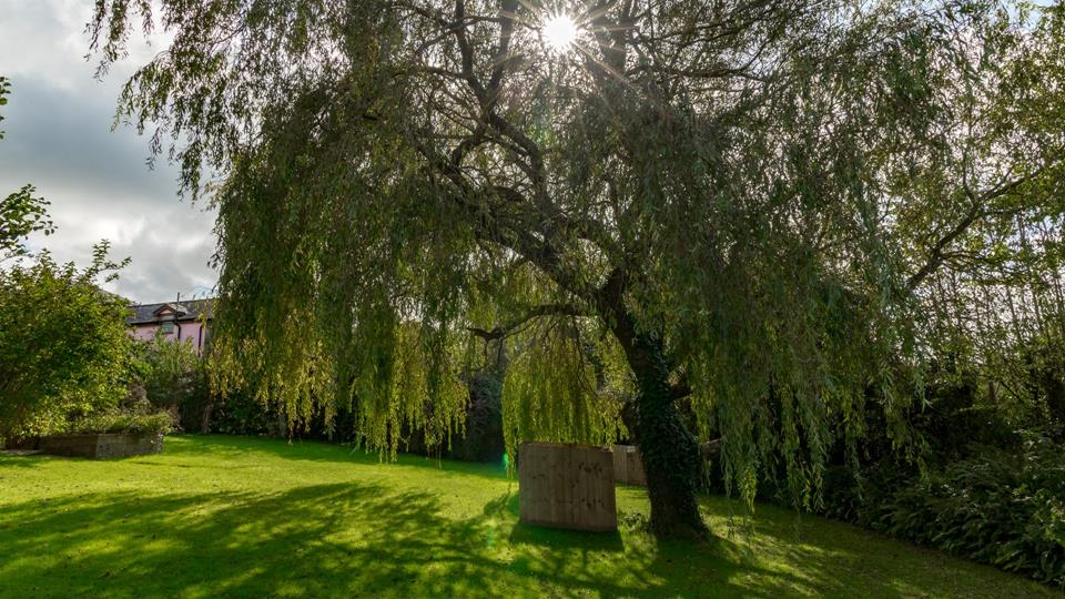 A lovely weeping willow tree in the garden provides character, privacy and a shady glade.